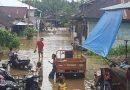 Banjir Bandang di Madina Tidak Hanya Korban Jiwa, Ribuan Hektar Sawah Terkena Banjir