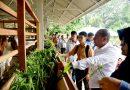 Kembangkan Taman Edukasi Cakra, Edy Rahmayadi Beri Inspirasi dan Wawasan Pertanian