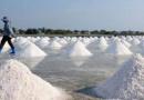 KPPU Minta Pemerintah  Ubah Tataniaga Garam Impor